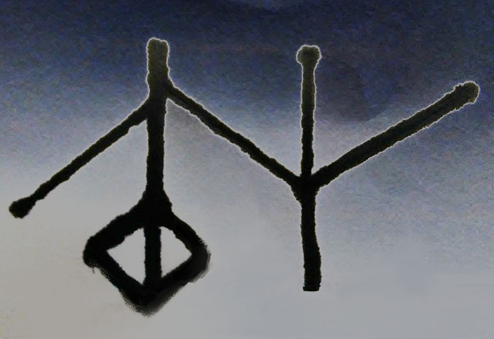 Viska-+Meaning+wisdom+and+knowledge.+The+Norse+rune+%28symbol%29+Viska+is+symbolic+of+the+Norse+god+Odin.+This+rune+also+applies+to+you%2C+Vikings+and+Valkyries%2C+with+upcoming+finals%2C+studying+and+any+other+tests.+