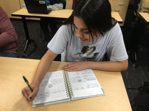 "Plan ahead! Sophomore Lilyana Grace fills out her planner for 2020 with new ideas and adventures. Grace planned things, and it made her work easier to be finished on time.  ""For 2020 I really want to be my most authentic self and enjoy the little things in life,"" Grace said."